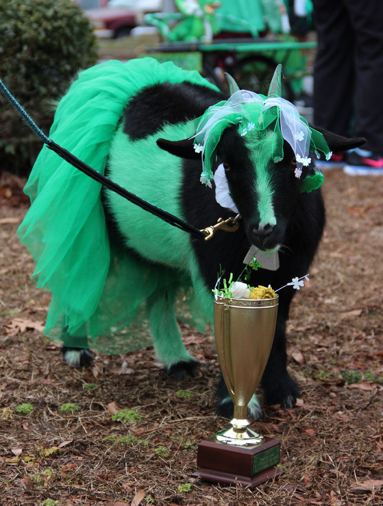 St. PETrick's Day Parade