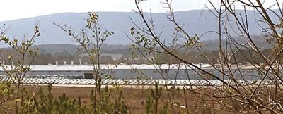 Old Bluebird plant in LaFayette