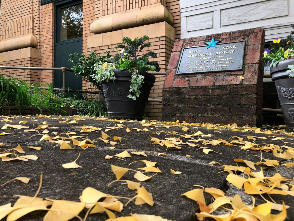 Fall brings out the colors alongside cooler temperatures