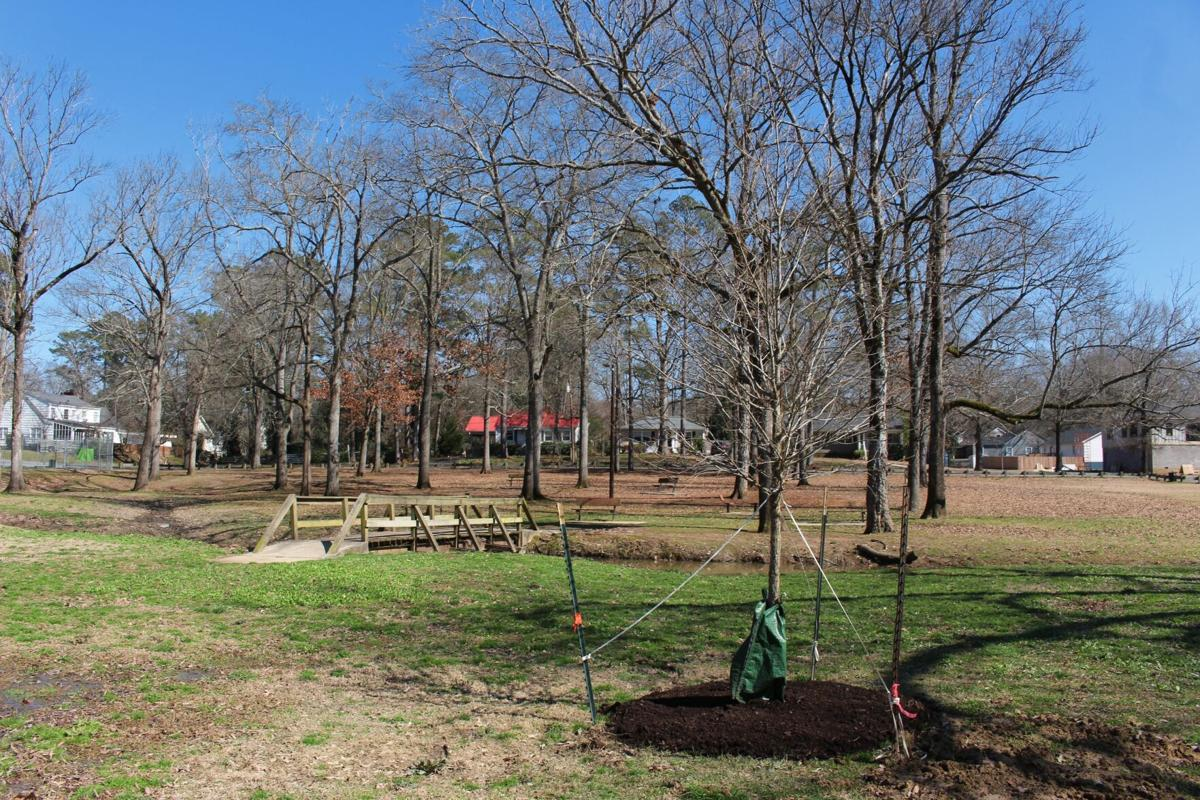Rome, Floyd County celebrate a nostalgic Arbor Day