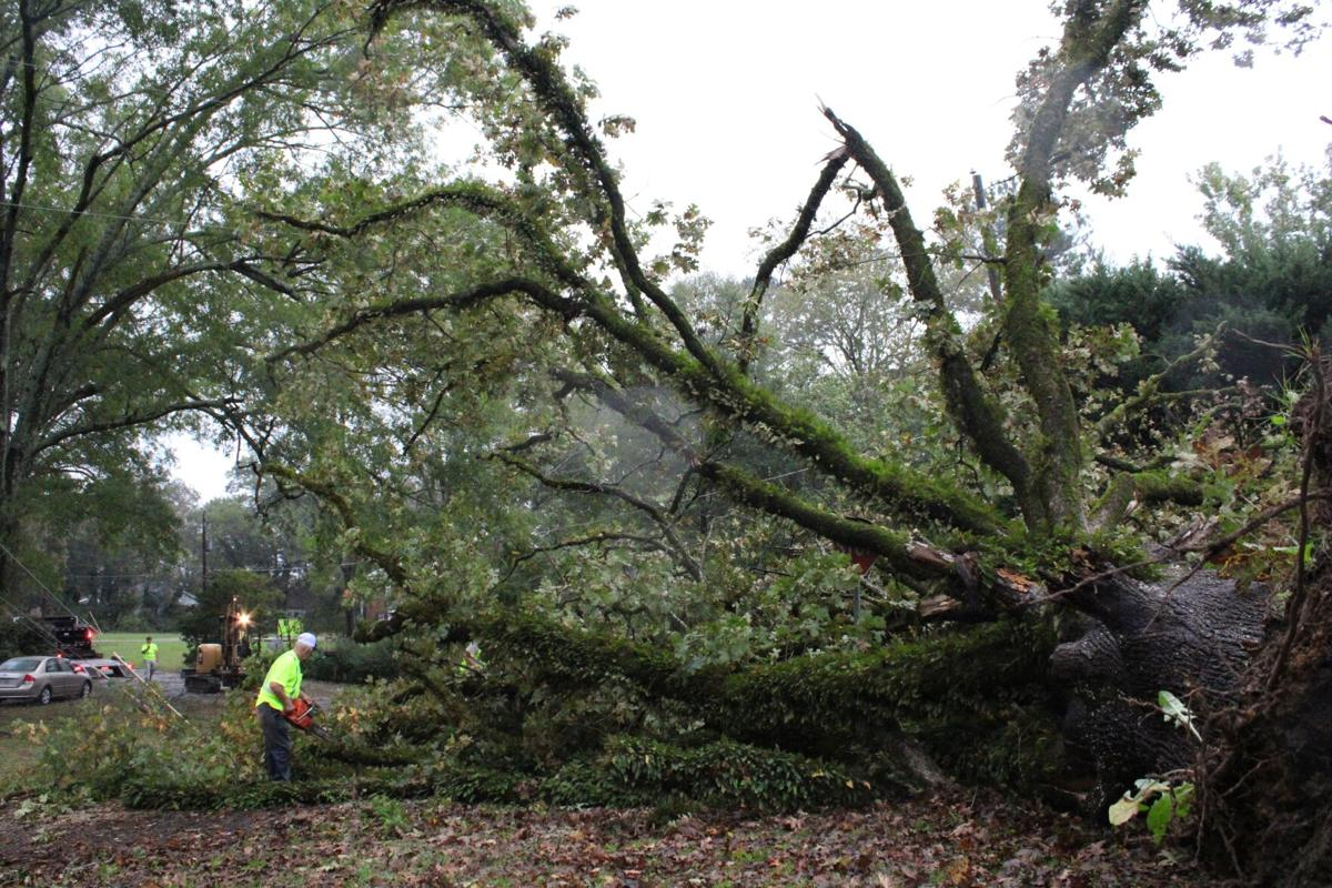 Zeta remnants blow through, knocking down trees across Rome and Floyd County
