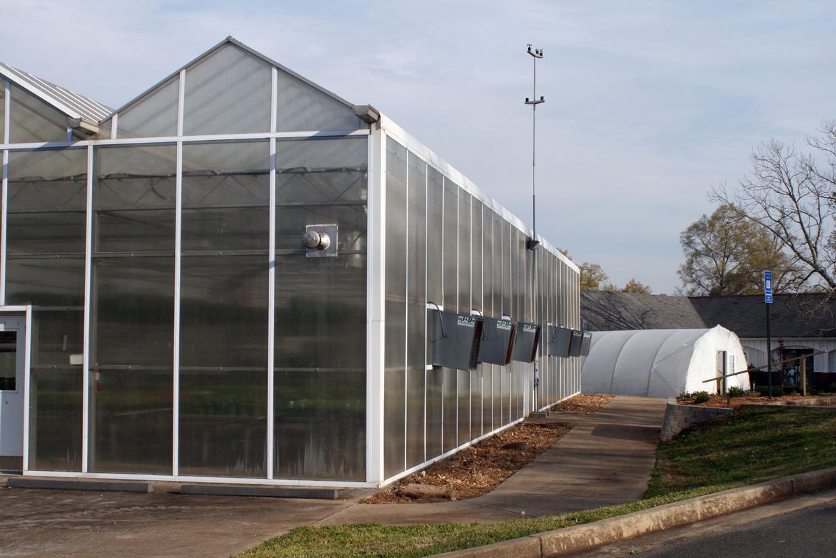 GNTC Plant sale