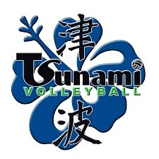 Tsunami Volleyball Logo