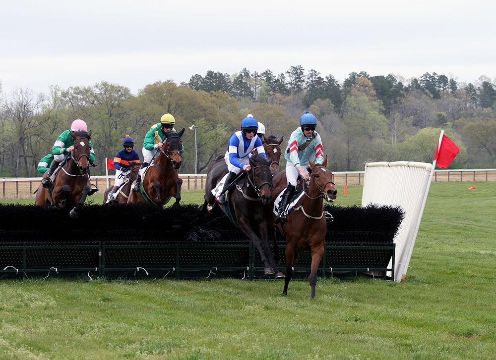 4fd39c3e1de Steeplechase draws kudos from equestrians