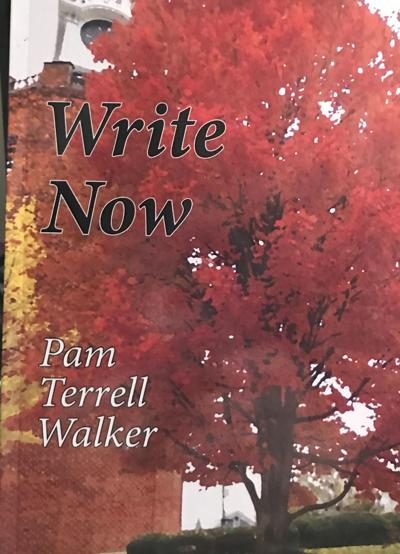 WRITE NOW BOOK COVER, Pam Walker