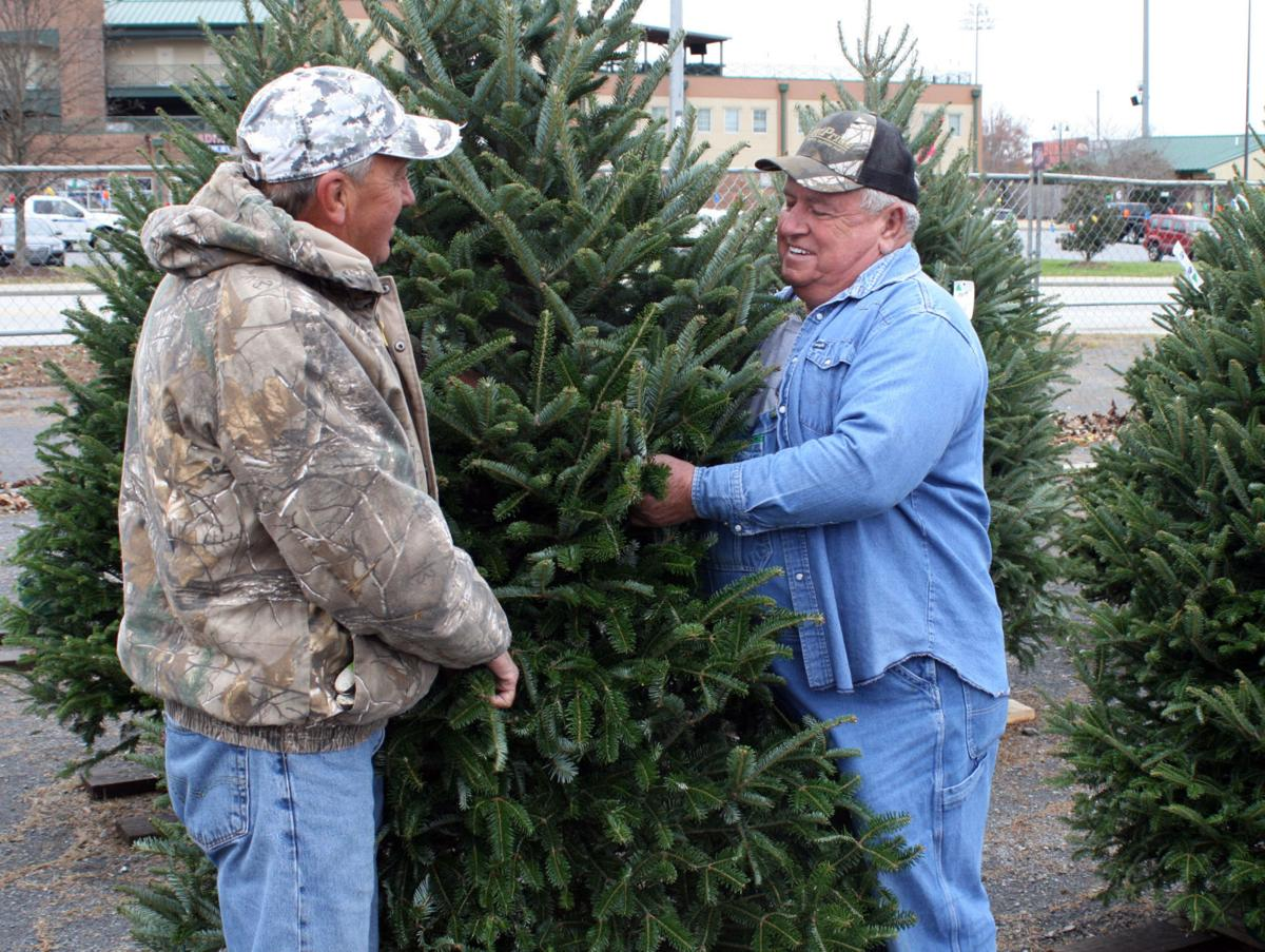 Christmas Tree City: Now a second generation family holiday ...
