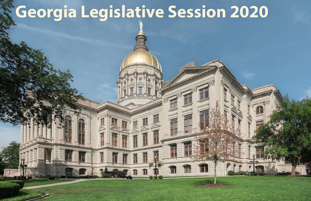 Georgia Legislature 2020