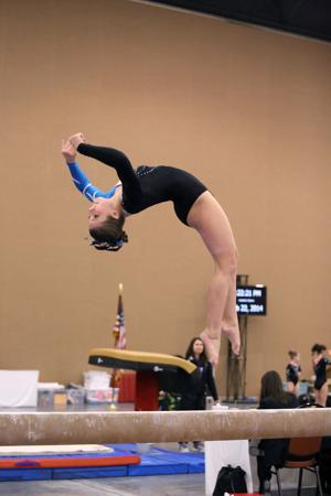 maryland level 3 gymnastics state meet news