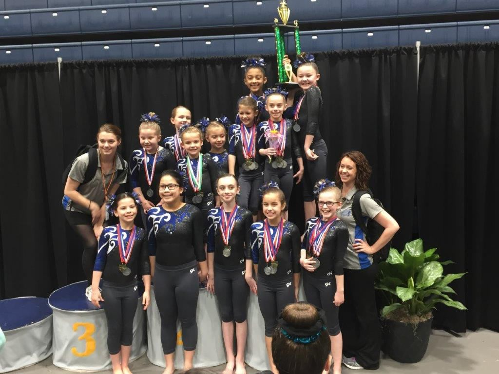 Rome Aerials Gymnastics finishes 2017 with multiple State Champions and Regional Qualifiers
