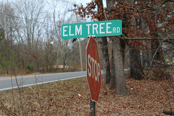 Elm Tree Road