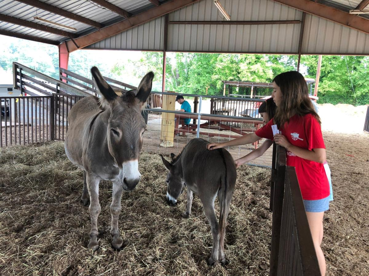Last day of Coosa Valley Fair 2019