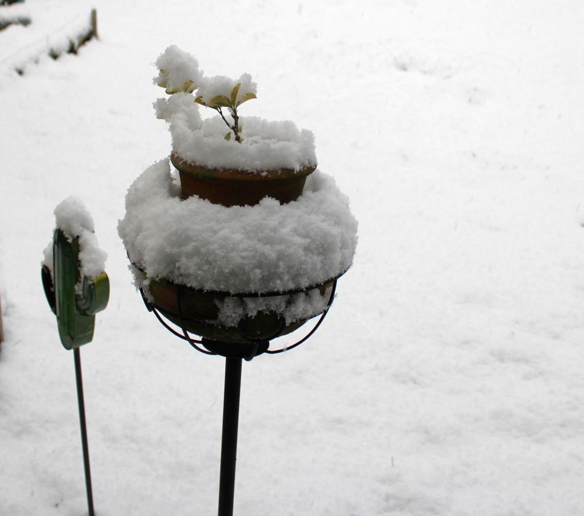 Feb. 8, 2020 snow