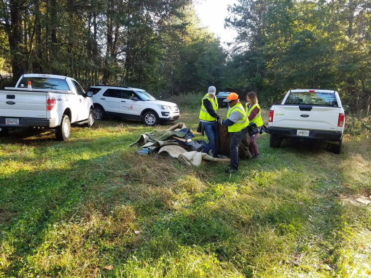 Volunteers clean at Simms Mountain as part of Rivers Alive project