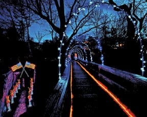Enchanted Garden Of Lights. Rock Cityu0027s ...