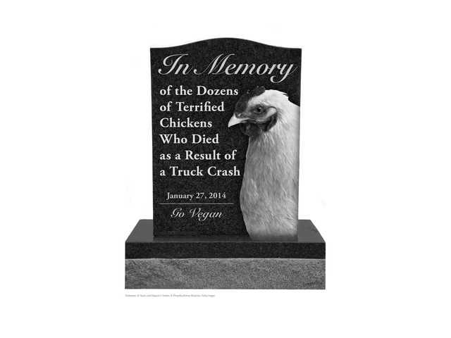 PETA Chicken memorial