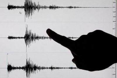 Temblor - sismo - marzo 13 2019