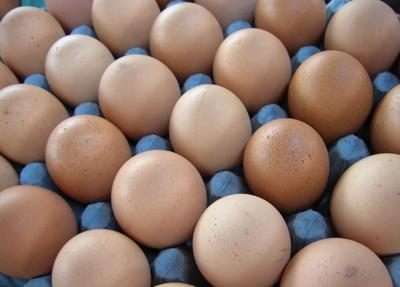 Huevos - alimento - Foto suministrada - mayo 24 2019