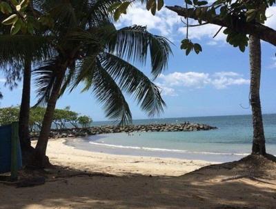 Playa - Puerto Rico - Foto suministrada - agosto 19 2021