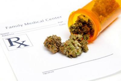 Línea Caliente: Denuncian problemas con licencias de cannabis medicinal
