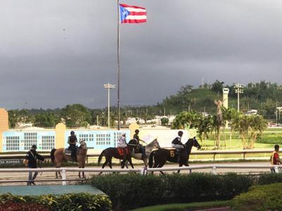 Hipodromo Camarero - carretera de caballos - Foto suministrada - marzo 19 2021