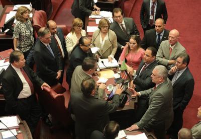 Senado sesion