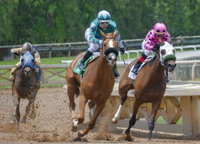 Carreras de caballos - hipodromo - Foto via Cybernews - mayo 8 2020