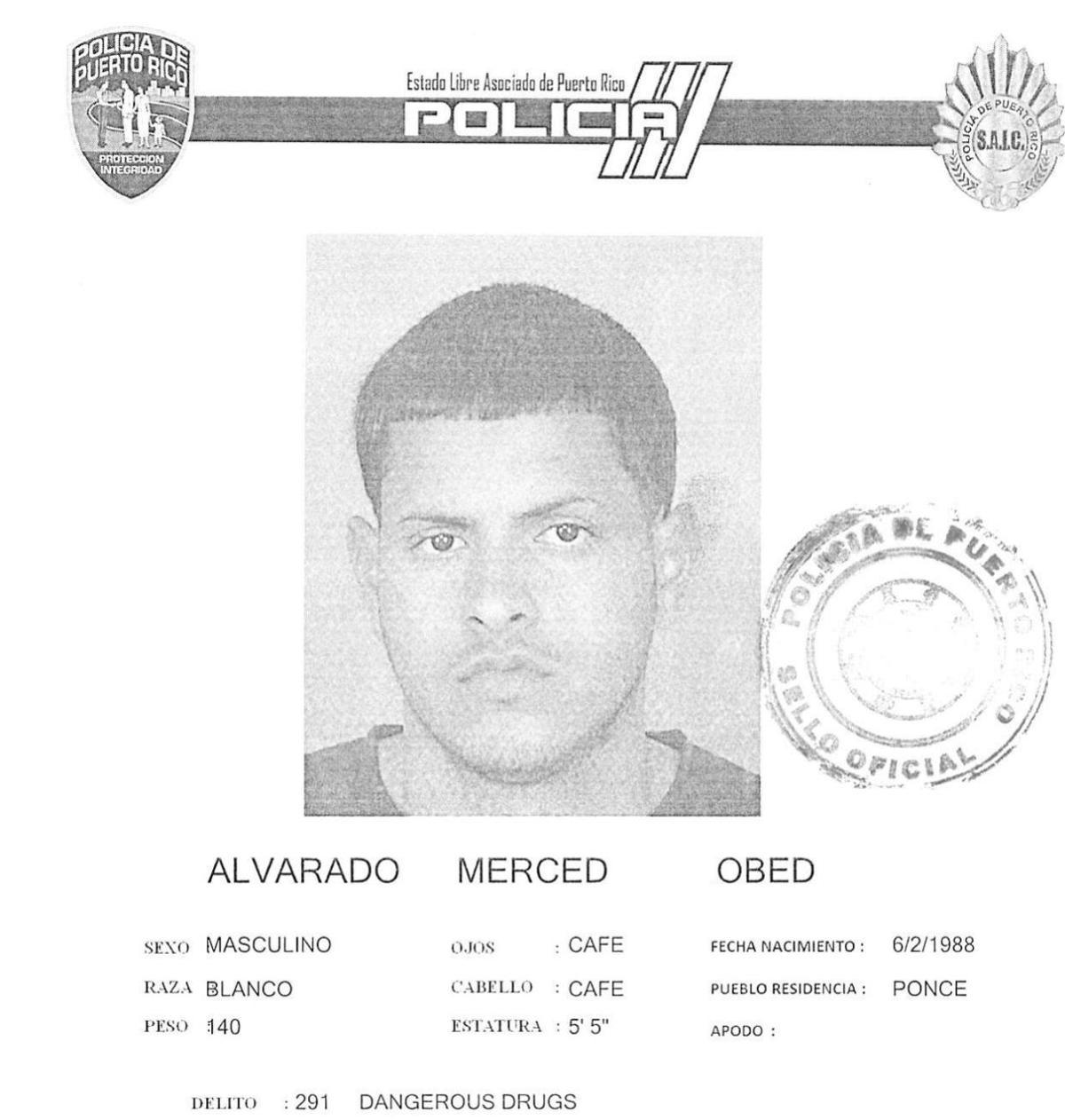 Ficha Obed Alvarado Merced