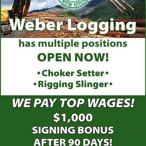 Weber Logging