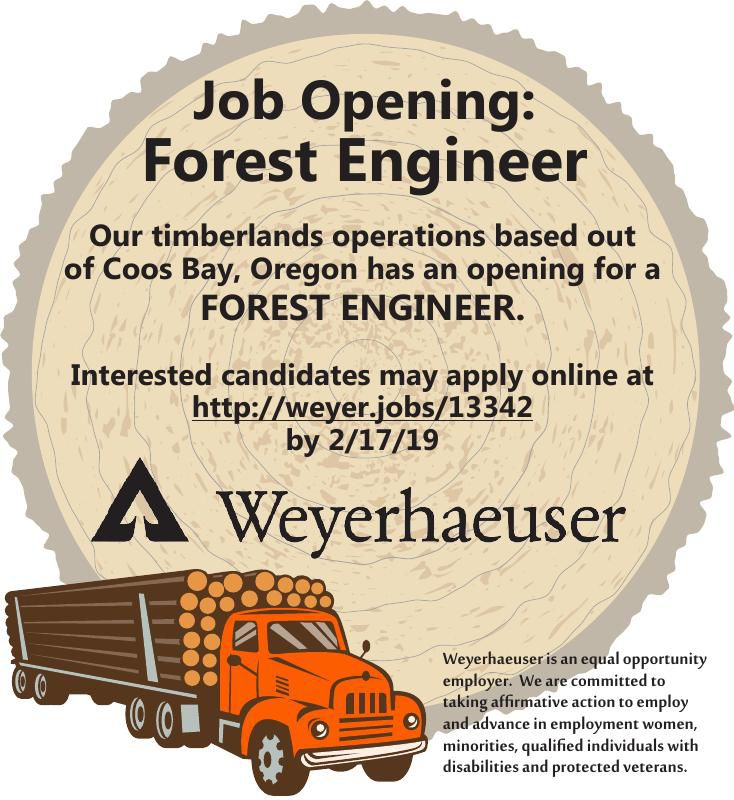 Forest Engineer