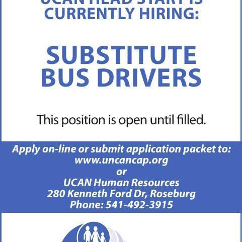 Substitute Bus Driver