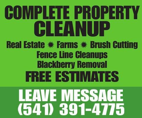 Complete Property Cleanup
