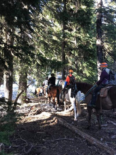 Roseburg man rescued on Pacific Crest Trail