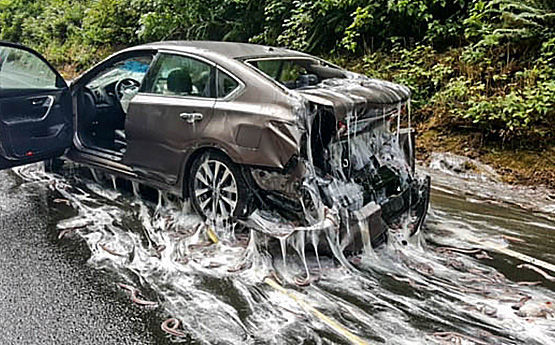 National Auto Care >> Hagfish slime scene at five-car crash on Highway 101 | State | nrtoday.com