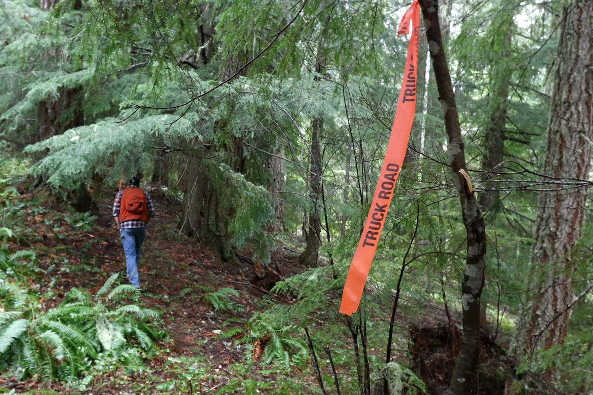 180429-nrr-logging-01