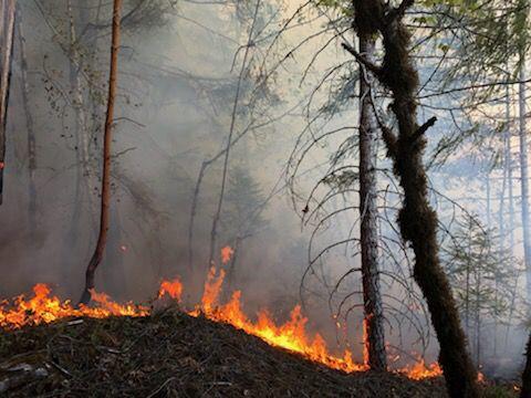 Susan Creek Fire3.jpeg