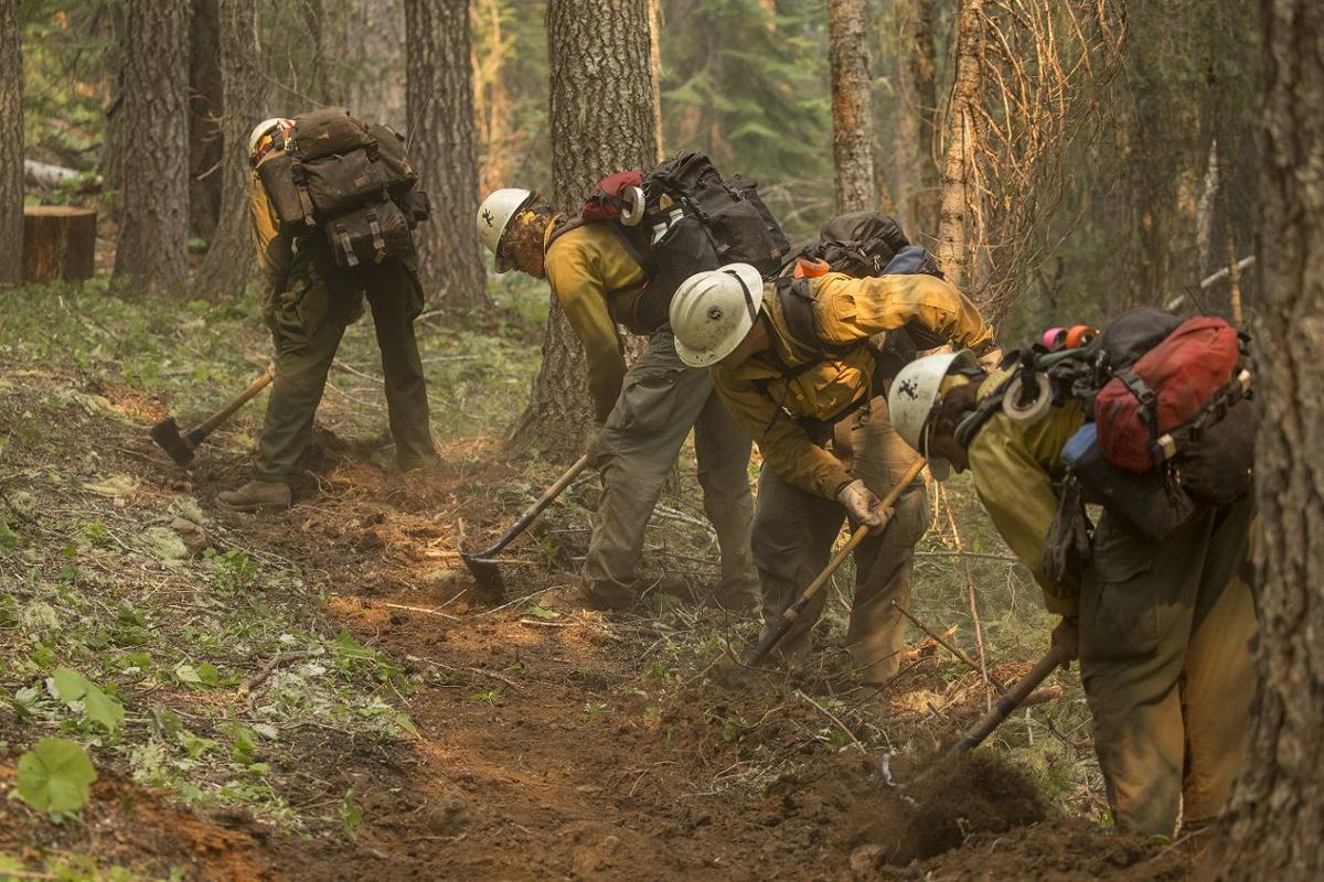 Umpqua National Forest Fires