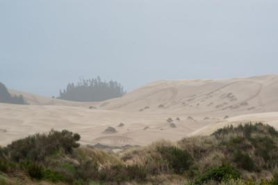 190519-nrs-vg-dunes-3