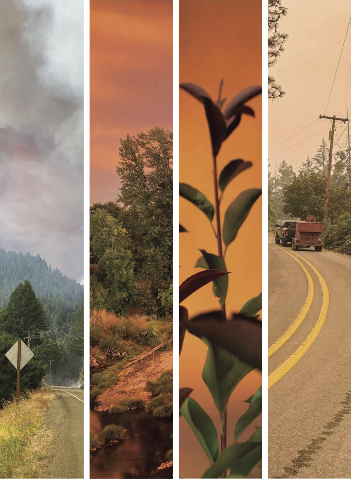 Wildfire causes main art