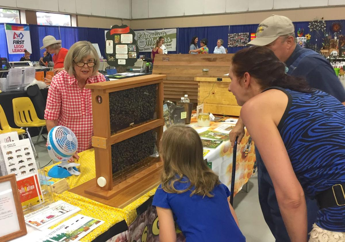 Live beehive at Douglas County Fair Wednesday