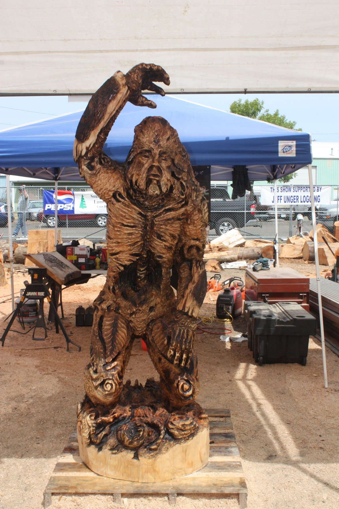 Crowd drawn to reedsport for chainsaw carving