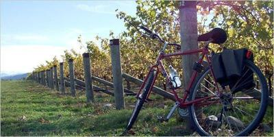 Wine about your bike