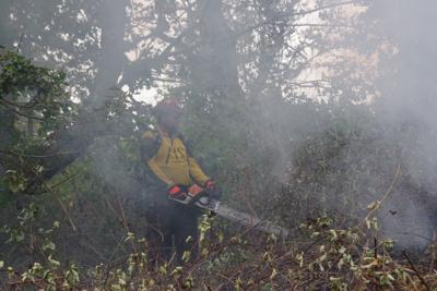 South Myrtle Fire