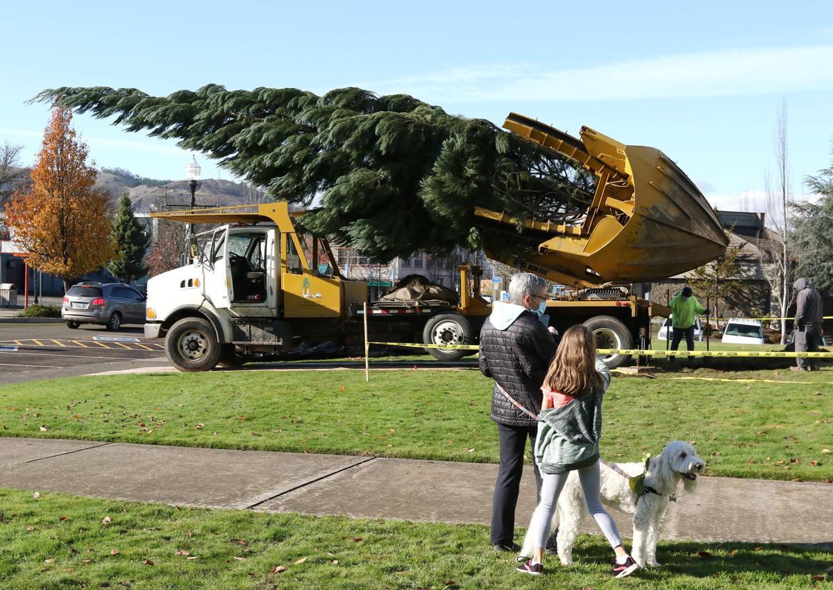 201125-nrr-christmastree-01