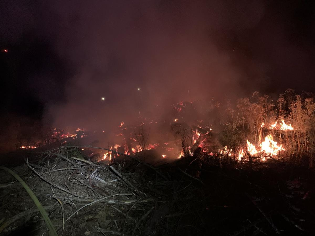 McComas Creek Fires