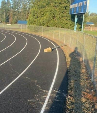 Track vandalism