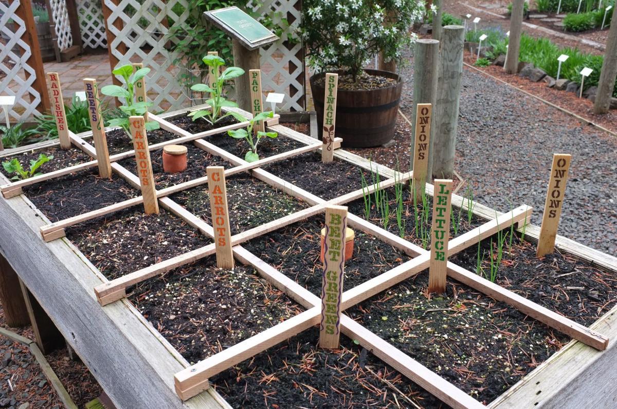 Square Foot Gardening_DG_Bonnie Courter.jpg