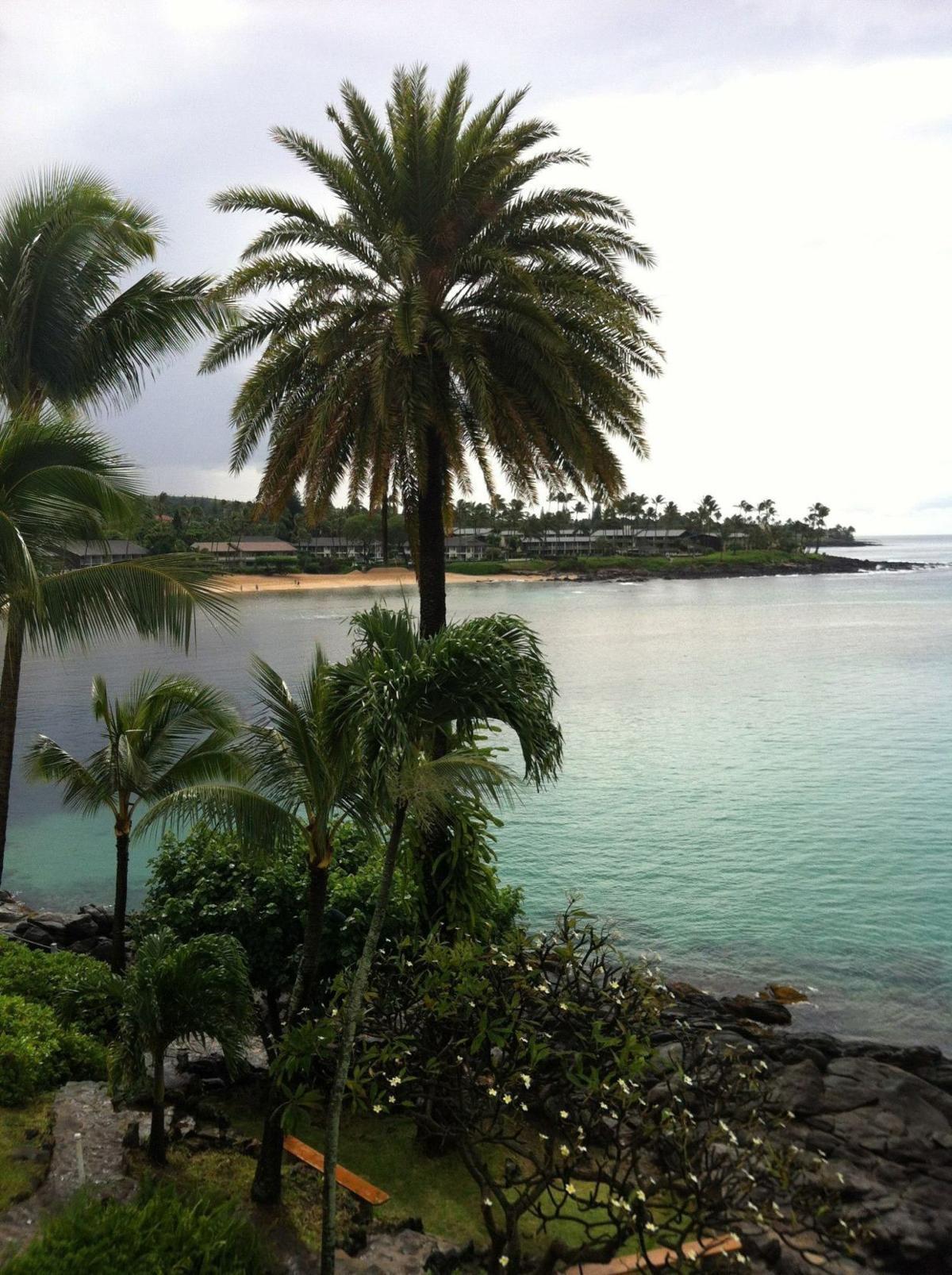 Napili Bay in Maui, Hawaii