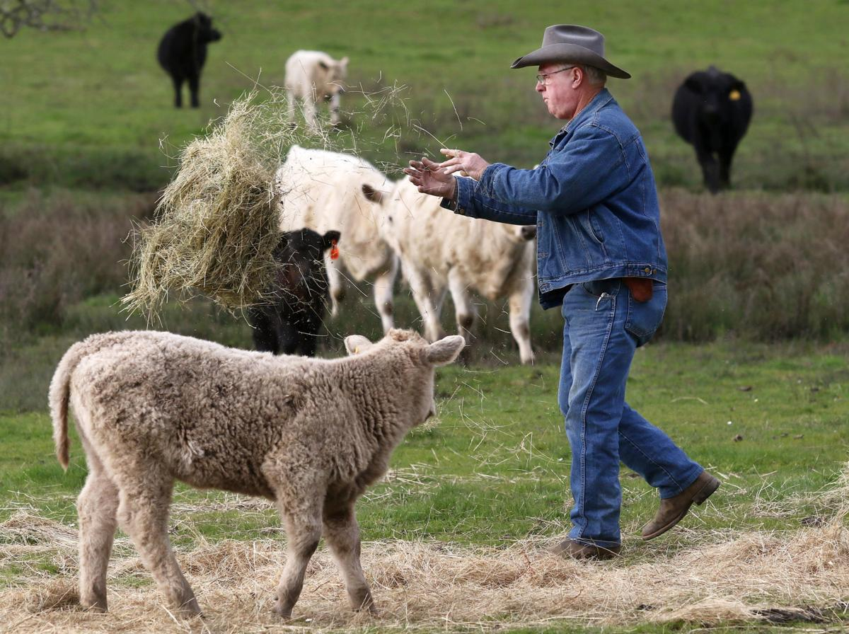 Livestock owners talk marketing as a group