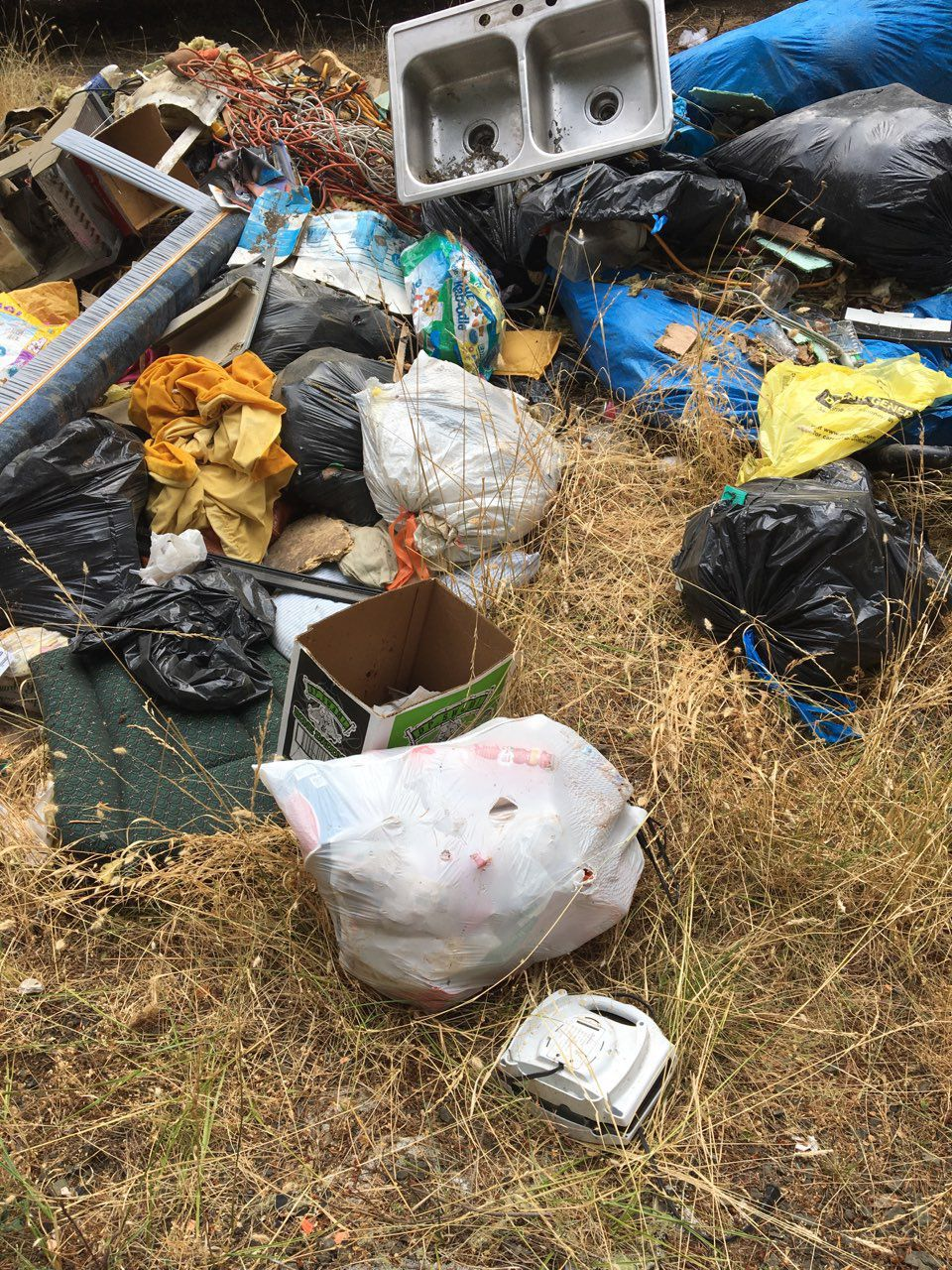Trash dump on private timberland in Douglas County