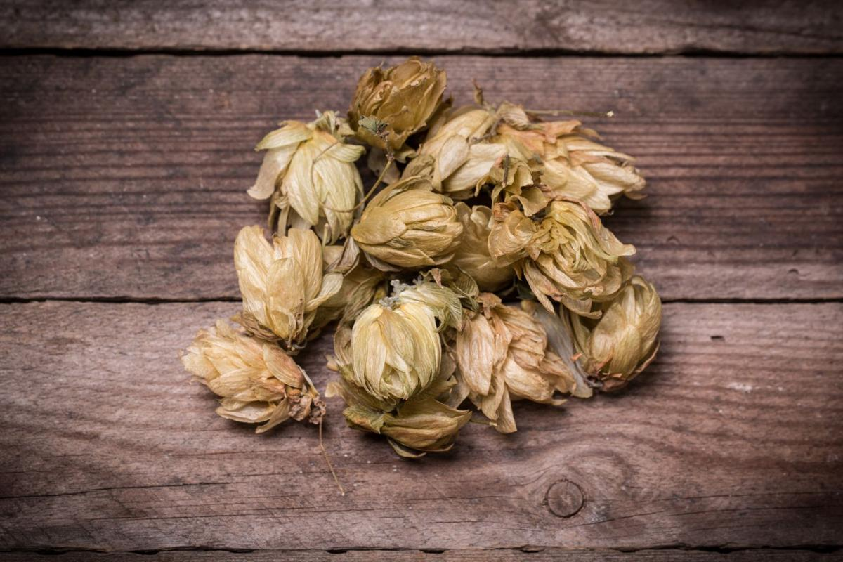 Hops are dead